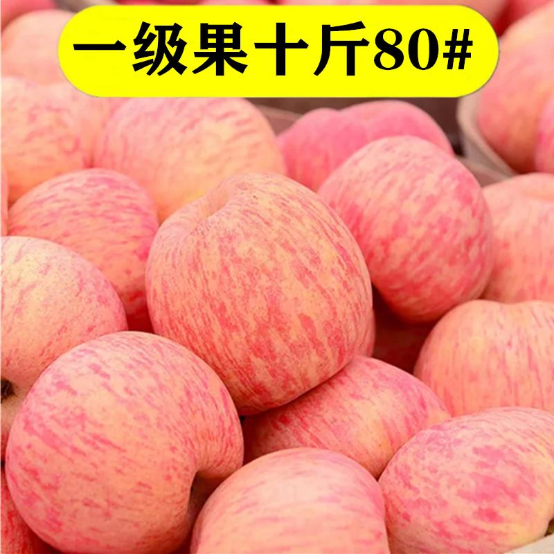 烟台苹果水果新鲜10斤包邮冰糖心生鲜苹果当季整箱山东栖霞红富士