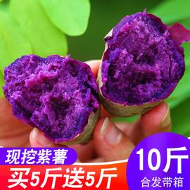 现挖紫薯新鲜带箱10斤香蜜甜薯农家板栗红皮地瓜当季蔬菜小番薯图片