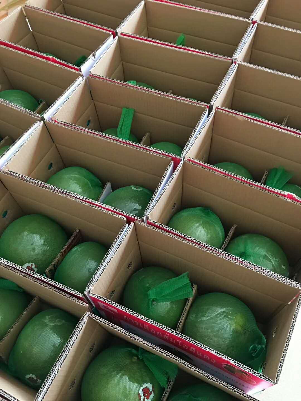 进口泰国越南新鲜红心柚 蜜柚 青皮翡翠红宝石柚整件12个装包邮