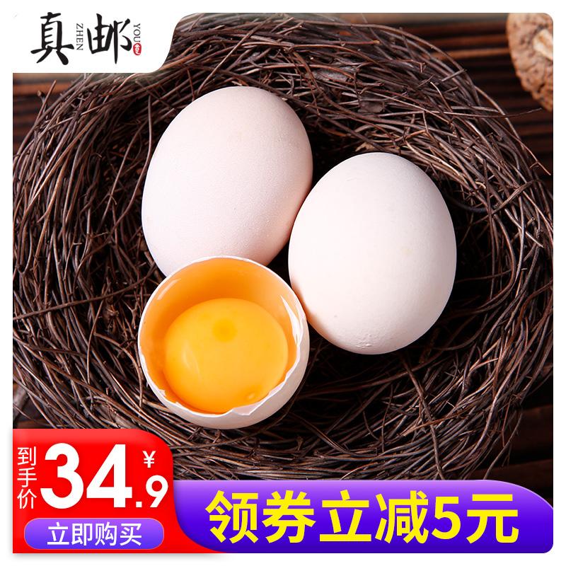 真邮农家散养土鸡蛋新鲜柴鸡蛋草鸡蛋本鸡蛋15枚/买一送一