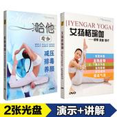 yoga哈他艾扬格瑜伽初级入门教学视频教程详解教材光盘2DVD光碟片