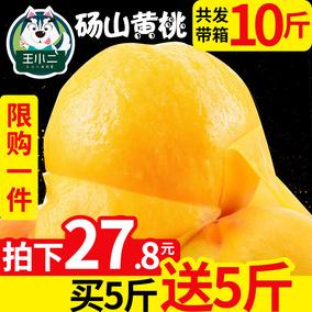 【买1送1】黄桃当季新鲜水果蜜桃包邮桃子脆毛桃油直批整带箱10斤