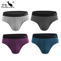 Kangaroo Men's Underwear Men's Briefs Cotton Youth Breathable Sexy Stretch Cotton Triangle Briefs Large Size Pants