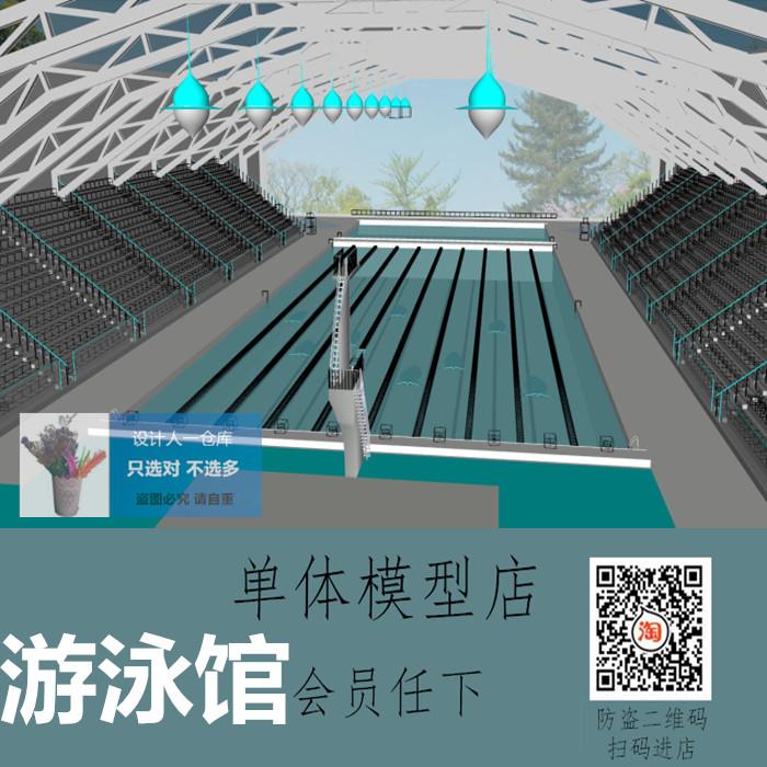 SU0224 比赛场地 游泳馆 游泳池 跳水台 体育馆草图大师SU模型