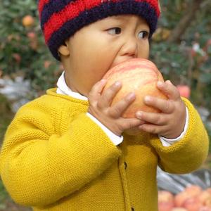 新鲜烟台苹果水果栖霞红富士吃的山东特产脆甜多汁不打蜡10斤包邮