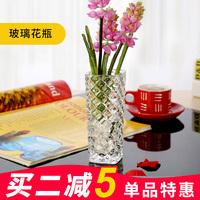 玻璃花瓶水培欧式透明创意小清新家居装饰插干鲜花富贵竹客厅摆件