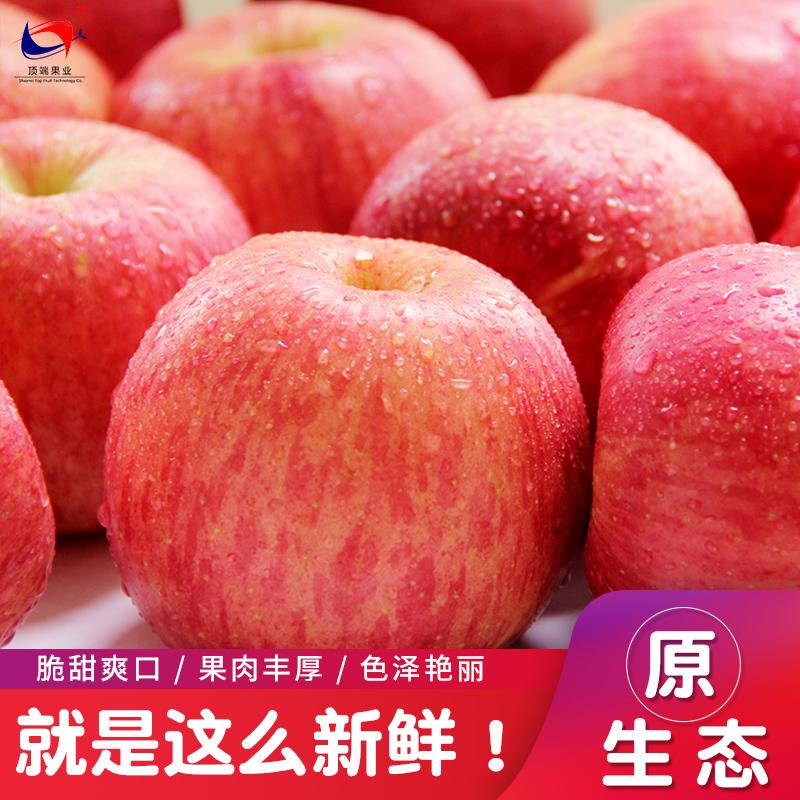 顶端果业红富士苹果陕西生鲜水果20枚85#延安特产新鲜苹果整箱