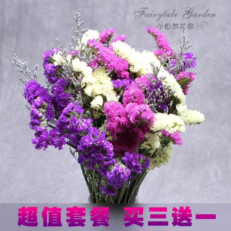 干花花束客廳裝飾情人節