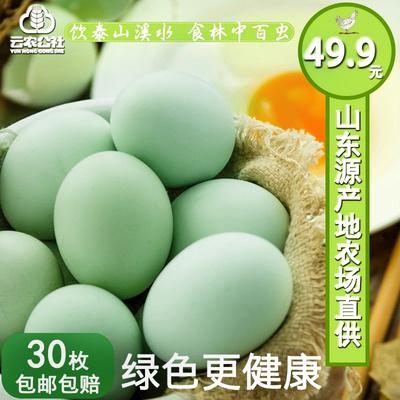 土鸡蛋农家散养新鲜草鸡蛋农村30枚绿壳鸡蛋柴鸡蛋笨鸡蛋草鸡蛋