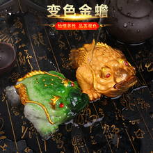 Creative tea tray decoration discolored Golden Toad boutique lucrative toad tea pet mink decorative tea table tea set accessories