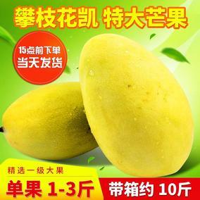 现货整箱10斤攀枝花凯特芒果当季热带新鲜水果非海南广西大贵妃芒