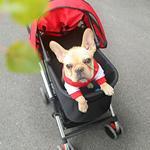 宠物推车狗狗猫咪折叠轻便拉车狗车小型轮椅婴儿车小狗外出手推车