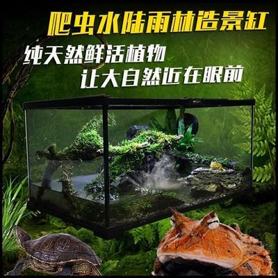 爬虫箱龟缸蜥蜴蛇蜘蛛透明玻璃爬宠饲养造景箱AK08