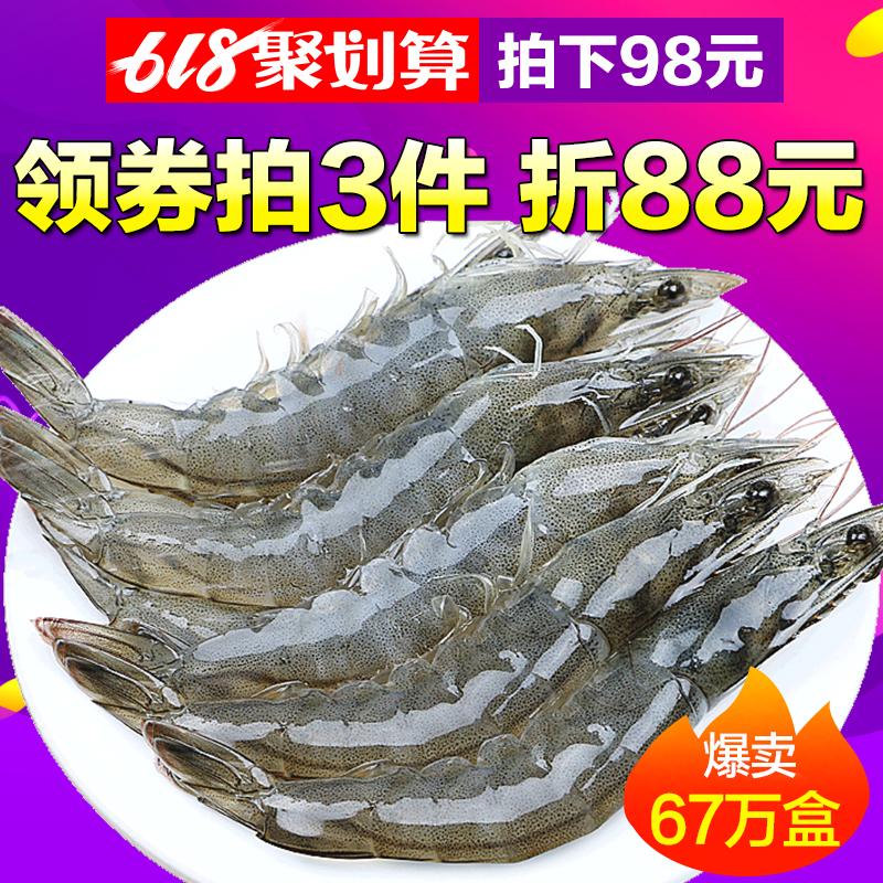 大虾鲜活海鲜水产青岛超大冷冻基围虾鲜虾海虾对虾青虾白虾冰活虾