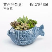 Conch shell coral aquarium fish tank landscaping decoration Mediterranean crafts creative drifting bottle marine ornaments