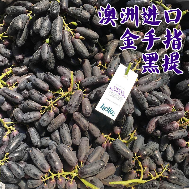 澳洲进口金手指黑提2斤装 无籽提子蓝宝石黑加仑葡萄新鲜水果特价