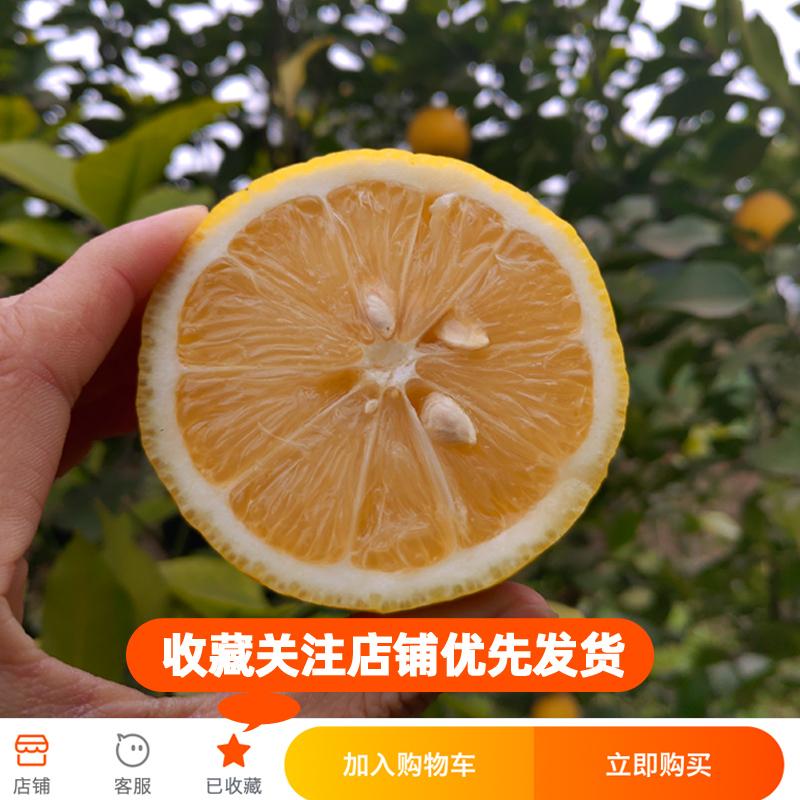 安岳黄柠檬带箱10斤  二三级丑果新鲜水果批发 非鲜青柠檬5斤包邮