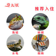 Nine demon climbing box spider horn lizard water turtle armor worm family villa small pet hedgehog waterproof incubator custom