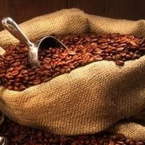 正品简装进口STARBUCKS星巴克咖啡豆浓缩烘焙500g新鲜到货特价促