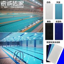 泳池砖游泳池专用瓷砖蓝色通体防滑地砖国家标准泳池地砖115X240