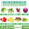蔬菜沙拉即食新鲜包邮混合3斤健身轻食套餐沙拉食材生菜蔬菜色拉