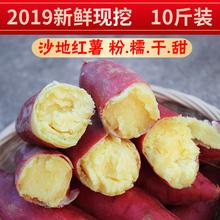 陕西现挖沙地新鲜板栗红薯10斤小番薯糖心蜜薯农家地瓜黄心香烤薯