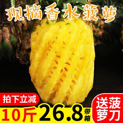 云南香水菠萝10斤当季新鲜水果凤梨整箱包邮非海南泰国小菠萝