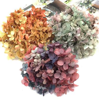 A级优质永生花材料包diy塔状小叶木绣球花结婚团扇材料包手工diy
