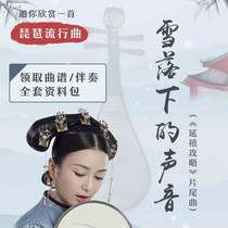 AA8914特级奥氏黄檀木材质专业演奏酸枝木琵琶北京星海琵琶乐器