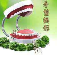 Mo leisure toys 1-6 times children's kindergarten brushing practice dental model teaching dentures oral model
