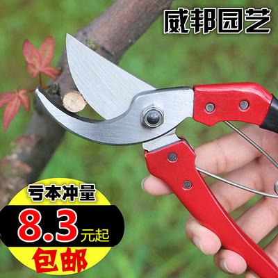 包邮园艺农用工具园林剪刀修枝剪果树剪粗枝花枝园林工具修剪工具