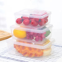 Preservation box plastic sealed box large capacity household refrigerator fruit box frozen special rectangular with lid storage box