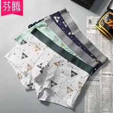 芬腾3条装夏季新款纯棉青年男生裤头平角裤舒适透气四角内裤杈