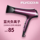 飞科电吹风机女家用理发店负离子不伤发大功率发廊吹风筒FH6273图片