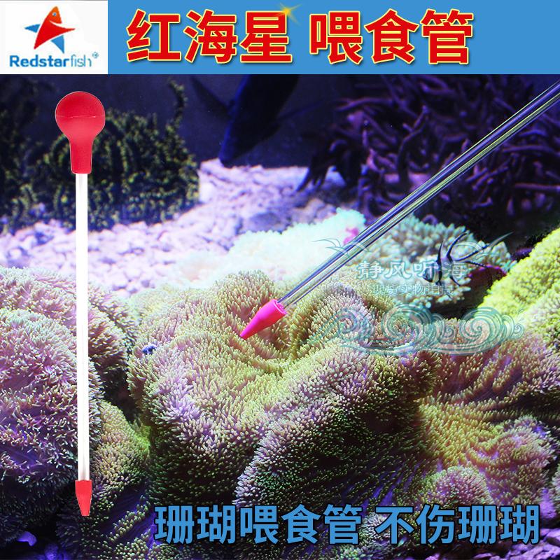 珊瑚喂食管
