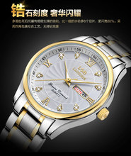 Rollsbin Swiss Watch Tuhaojin Fully Automatic Quartz Watch Double Calendar Men's Watch