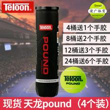 天龙网球训练器比赛用球网球球 4个装 Teloon天龙球P4 POUND