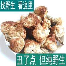 长白山纯野生猴头菇干货新干猴头菌可打猴头菇粉特级养胃猴菇250g