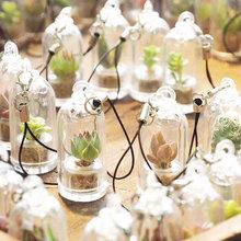 易活创意多肉迷你小盆栽 绿植物微景观室内仙人球挂件瓶diy钥匙扣