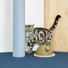 one新款创意UFO猫抓板磨爪器耐磨编织剑麻实木猫咪用品人气猫爬架
