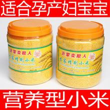 沂蒙黄营养米 小黄米新米 黄小米桶装 孕妇月子婴儿宝宝米柏邮