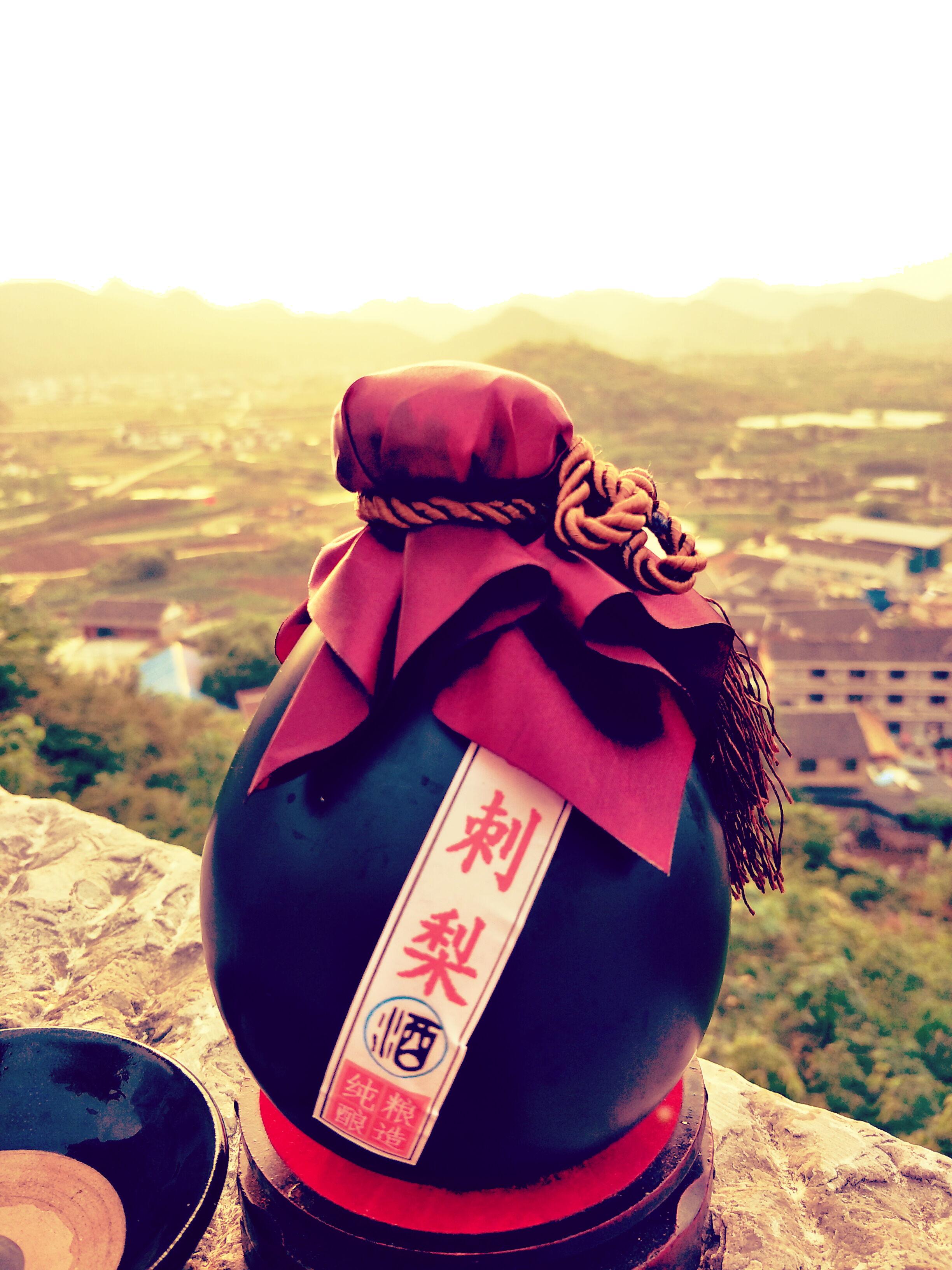 贵州刺梨酒