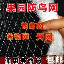 纸袋子家用防鸟防水葡萄袋子水果套袋葡萄套袋专用袋套葡萄专用