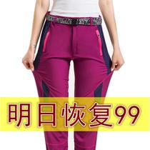 攀岩登山户外快干长裤KG510106kg510168正品夏秋清仓凯石头速干裤