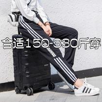 350特大码运动裤240斤腿粗裤子230胖mm夏装300超大码女装显瘦女裤