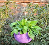 Thick resin plastic gardening flower pot hanging down hanging basin hanging basket pot rattan hanging orchid flower pot hanging pot hanging pot