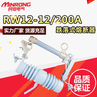 Minrong electrical factory direct sales RW12-10/100A 10KV outdoor high voltage drop fuse