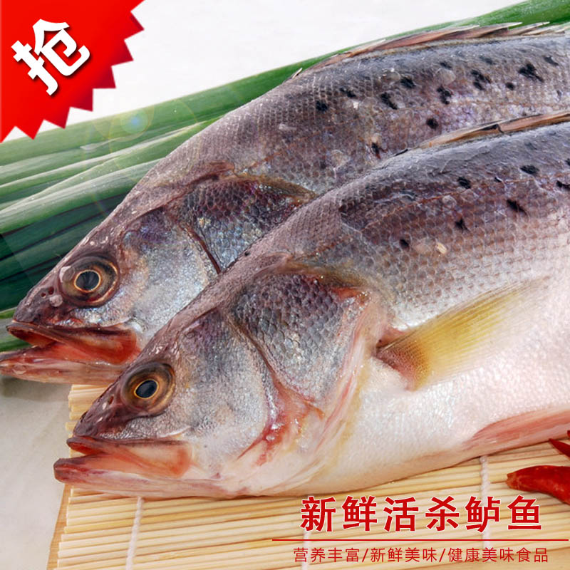 活杀鲈鱼1条1-1.3斤 新鲜水产 菜市场 沃鲜汇生鲜超市