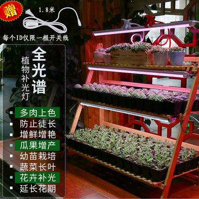 植物蔬菜天猫上是真的吗