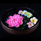 Beauty Bed View Basin Spa Spa Decoration View Basin / Lotus View Basin Thai Aromatherapy SPA Supplies